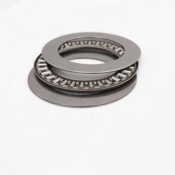 0.75 Inch | 19.05 Millimeter x 1 Inch | 25.4 Millimeter x 1 Inch | 25.4 Millimeter  MCGILL MI 12 Needle Non Thrust Roller Bearings