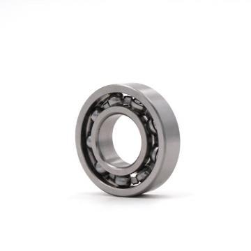 RIT BEARING 6204-3/4 2RS C3  Ball Bearings
