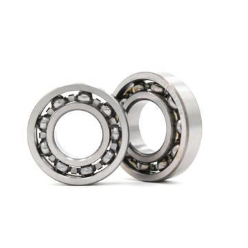 EBC 6213 2RS C3  Ball Bearings
